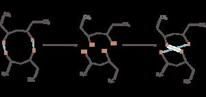 La división y la conexión de los enlaces disulfuro en el cabello humano por agente de la permanente