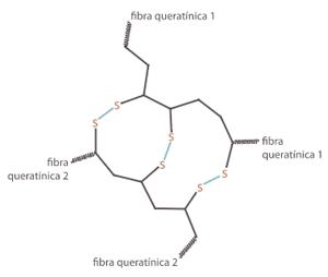 Fórmula estructural de la queratina con enlaces de disulfuro